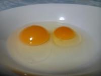 初産の卵2