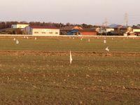 麦畑の白旗