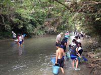 祓川の生き物調査
