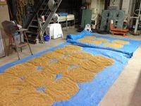 種籾の乾燥中